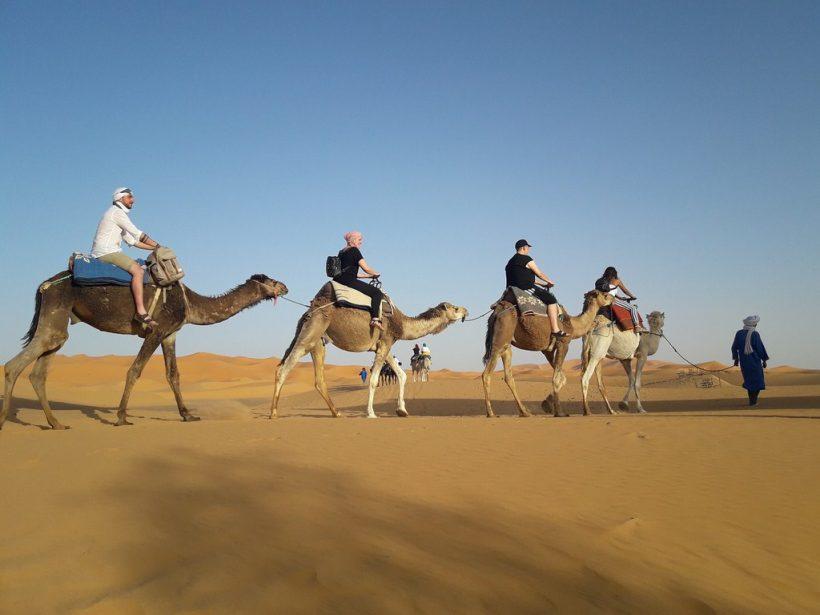 saharadeserttrips-trip-tour-camel-ride-sahara-desert-trips-tours-morocco-maroc (Copier)