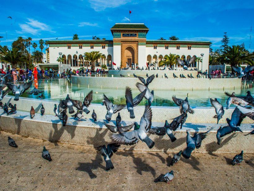 c-fakepath-urban-adventures-morocco_casablanca_fountain_pigeon (Copier)